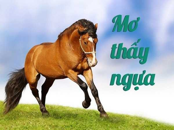 Mơ thấy ngựa là điềm báo lành hay dữ?