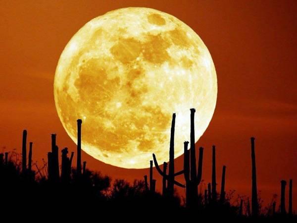 Phân tích ý nghĩa giấc mơ thấy mặt trăng là điềm báo lành hay dữ?