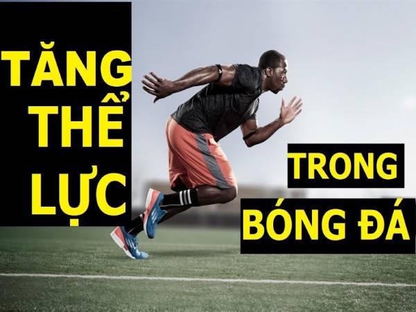 Cách tăng thể lực trong bóng đá hiệu quả bạn nên biết